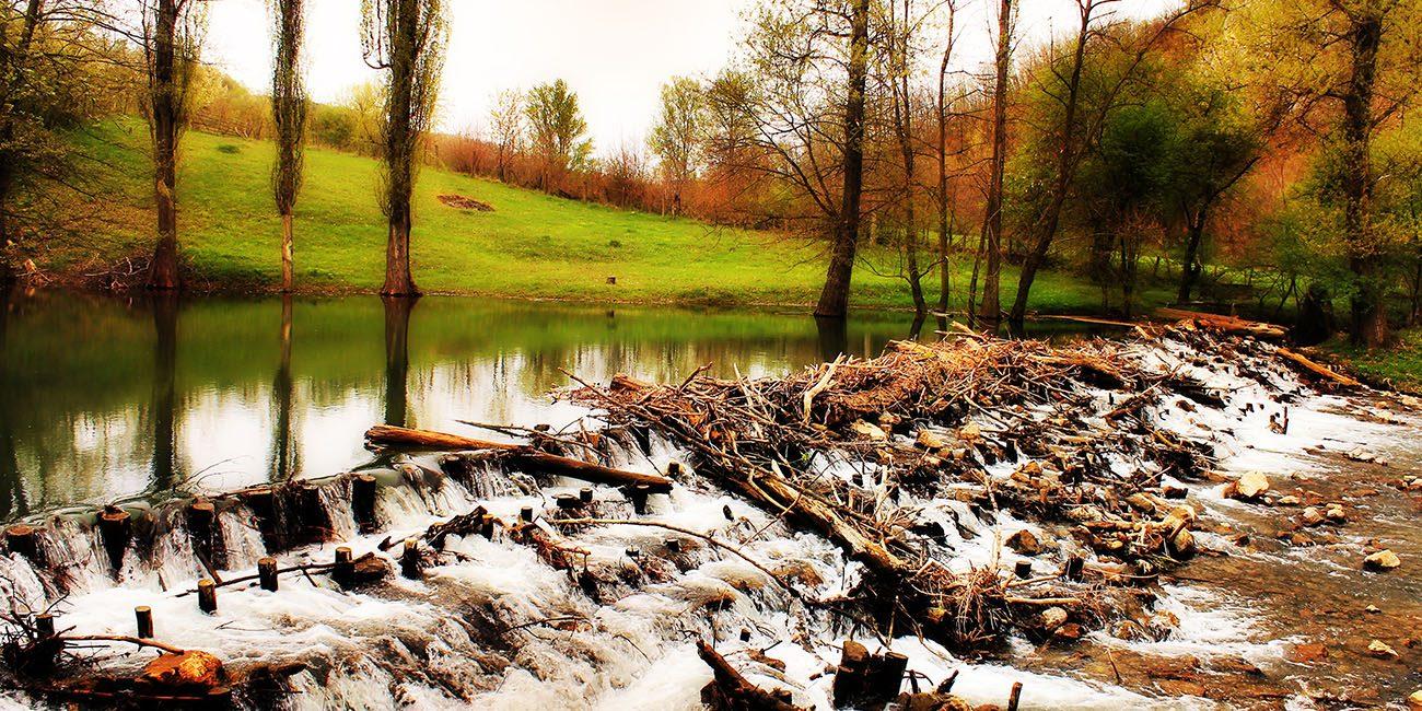 Gradac River